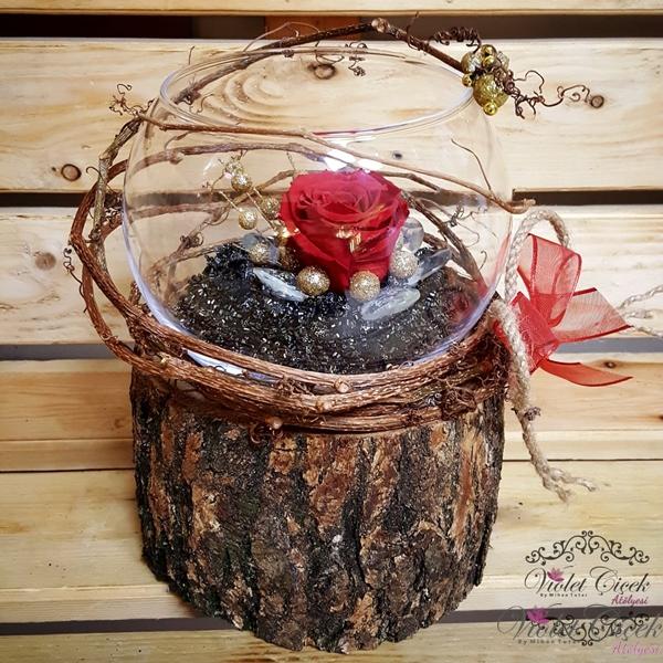 Kütükte Cam Vazo Şoklanmış Güller