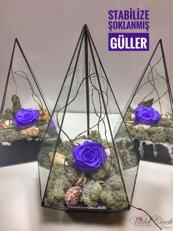 Geometrik Vitray İçerisinde İthal Şoklanmış Güller